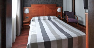 SINGLE ROOM Nuevo Torreluz Hotel
